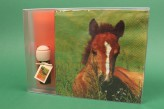 Raumduft + Servietten Geschenkset Duftöl Weihnachtsgeschenk Geschenk Cavallo
